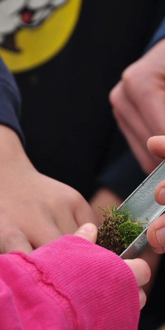 Checking Soil STEM   Become a Friend   First Green   A GCSAA Program